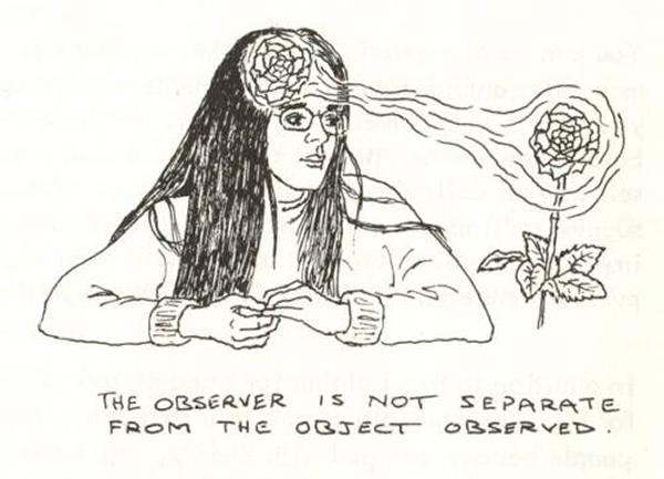 OBSERVER - OBSERVED