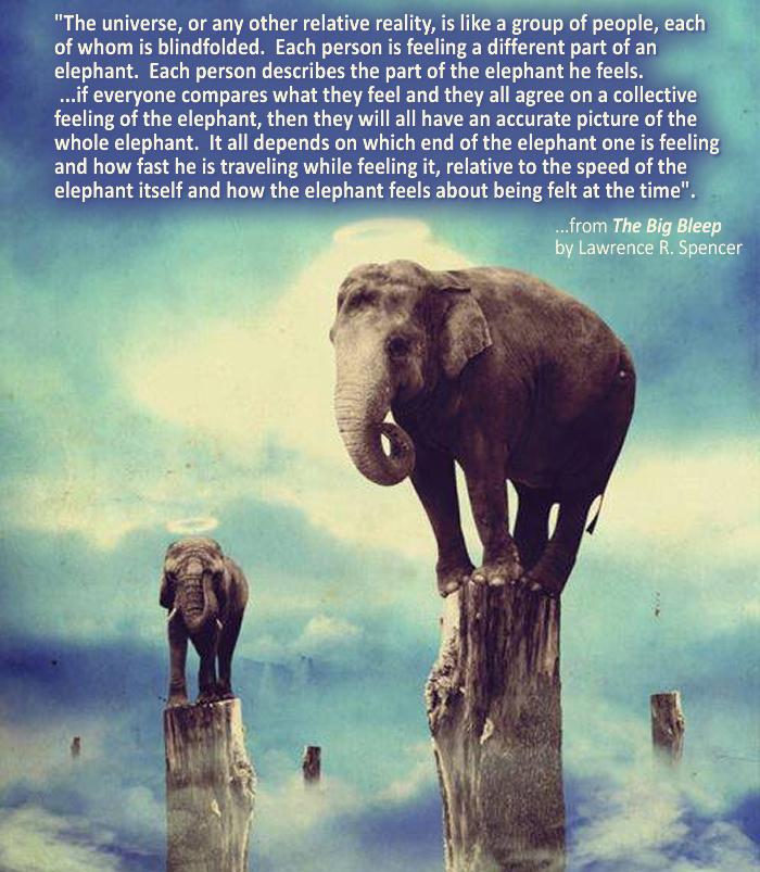 FEEL THE ELEPHANT
