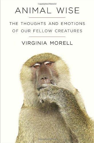 animal thoughts