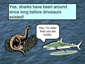 sharkasaurs